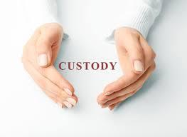 Custody (2015)