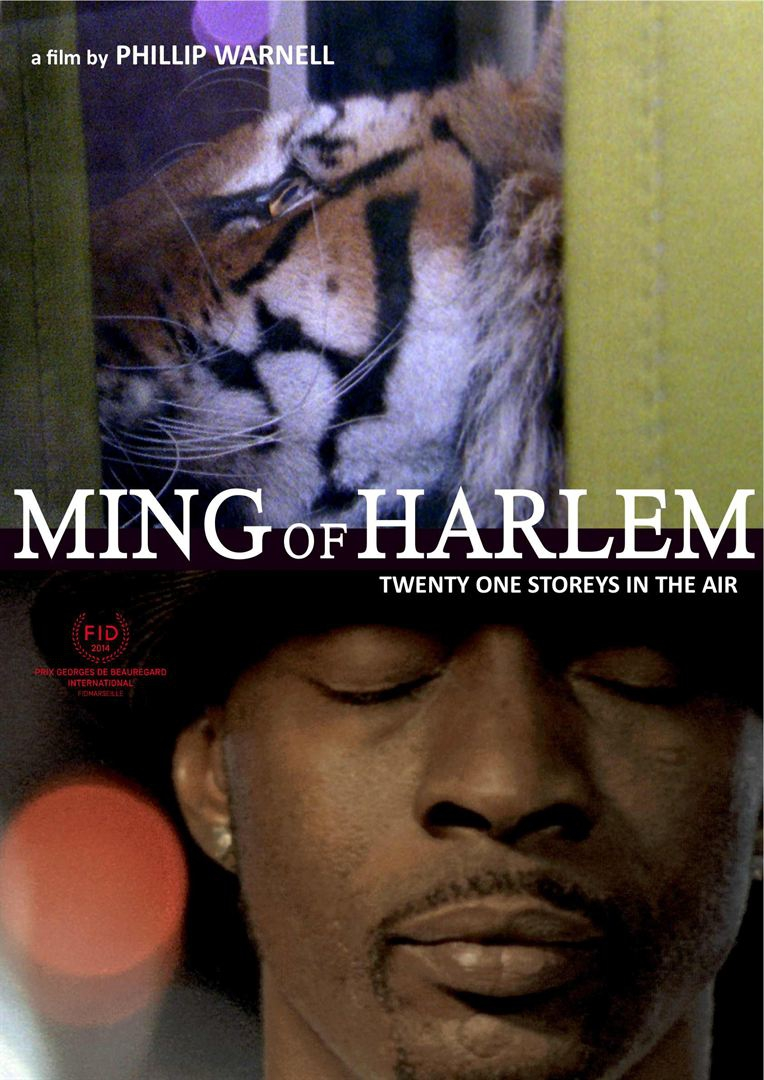 Ming of Harlem: Twenty One Storeys in the Air  (2014)