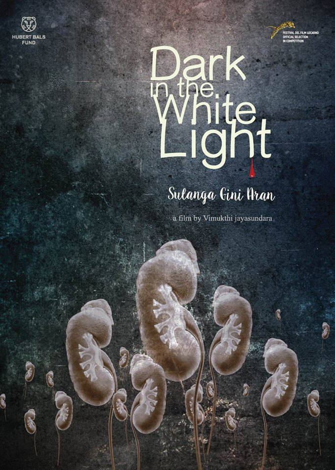 Dark In The White Light (2015)