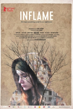 Inflame (2017)